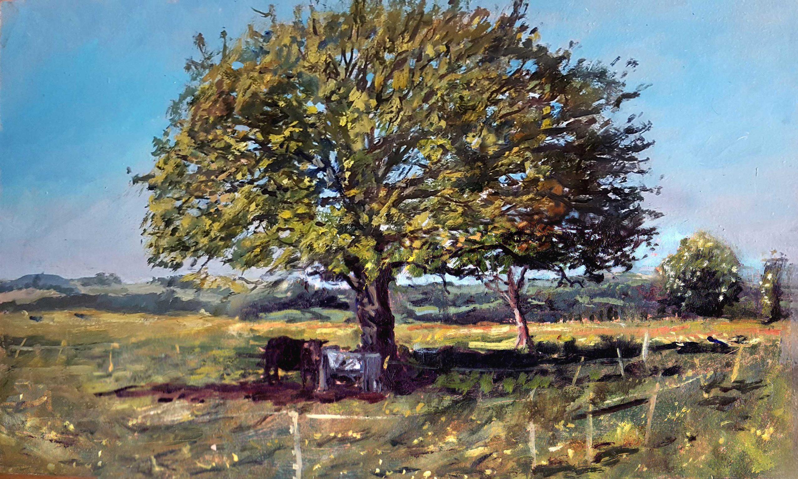 211.-Tree-with-cowoptimised